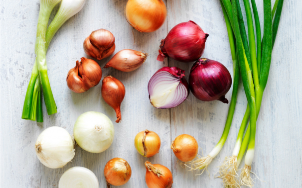 Sydney Markets - The definitive guide to onions