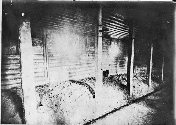 Та сама конюшня, де виконували вироки. Фото з бібліотеки конгресу США