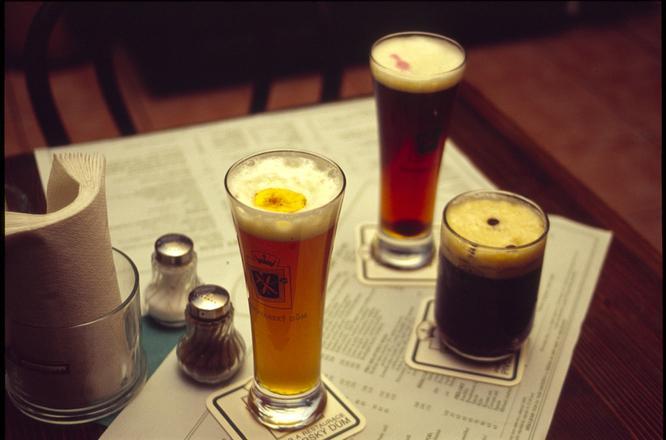 beers-1329972.jpg