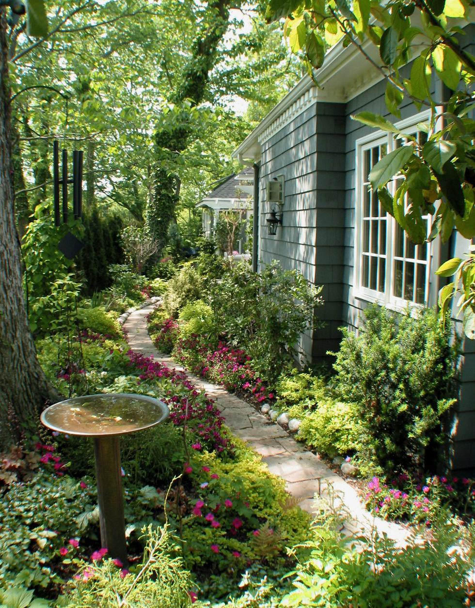 Native habitat in a back yard with bird bath
