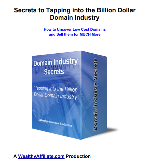 Low Cost Domains Names and Sell them for Much More