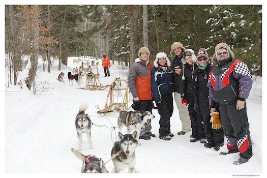 Everything You Need to Know About Dog Sledding Ontario