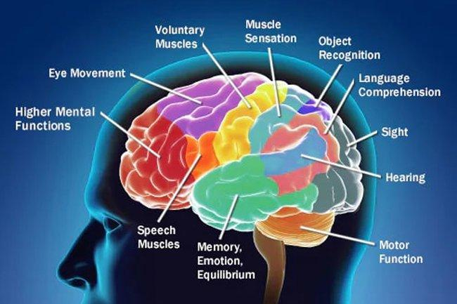 Cancer: What Complications Can Brain Cancer Cause?
