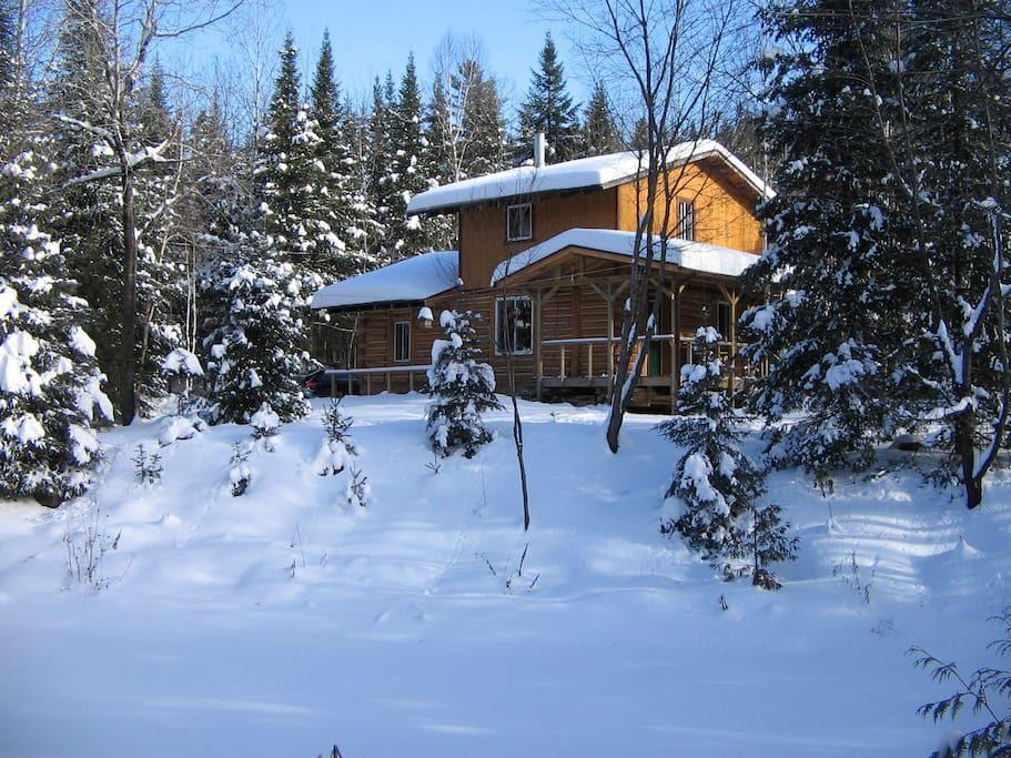 cottages for rent in Mandeville #1