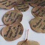 Eucalyptusblaadjes voor de cadeauverpakking