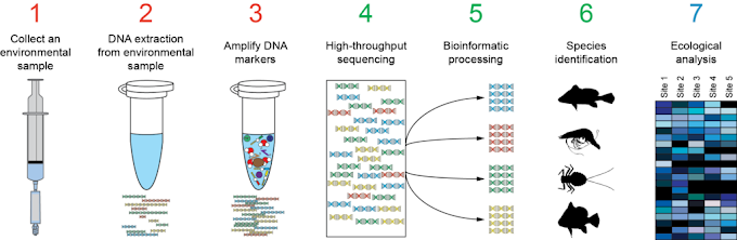 ADN-Barcoding y Metabarcoding