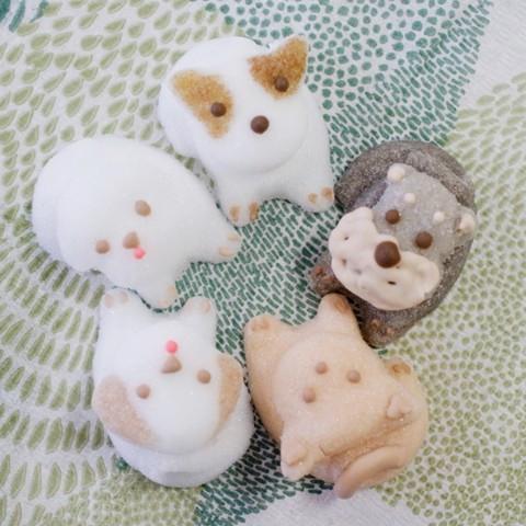日本, 貓奴, 杯緣子, 砂糖杯緣子, 水瀨