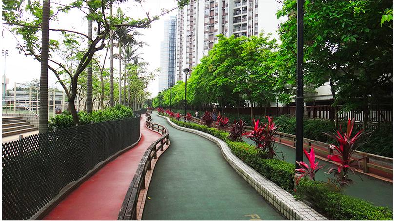 鰂魚涌公園設有長達640米的單車徑,適合親子踏單車