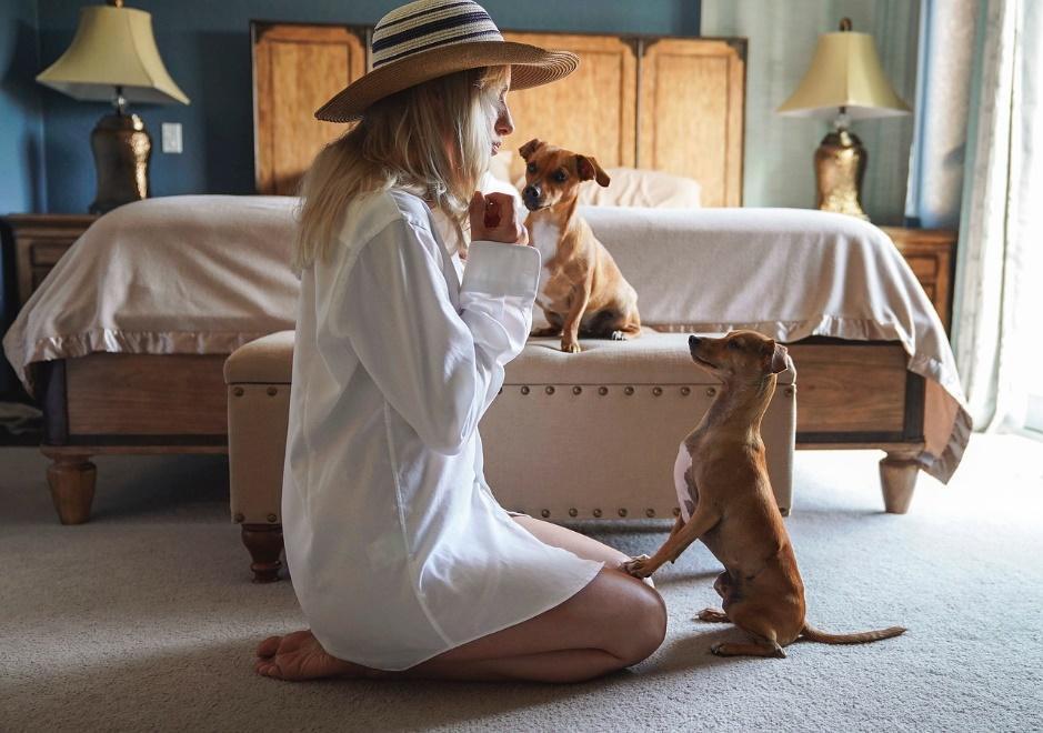 revelar la verdad sobre perros y coronavirus