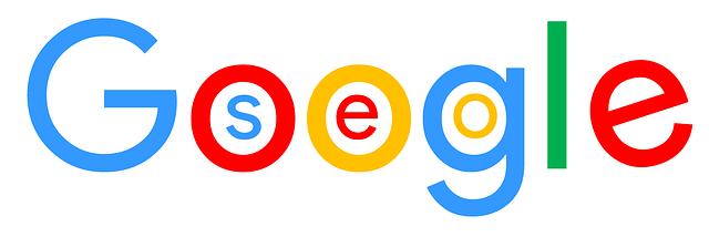 delnext_seo-Google