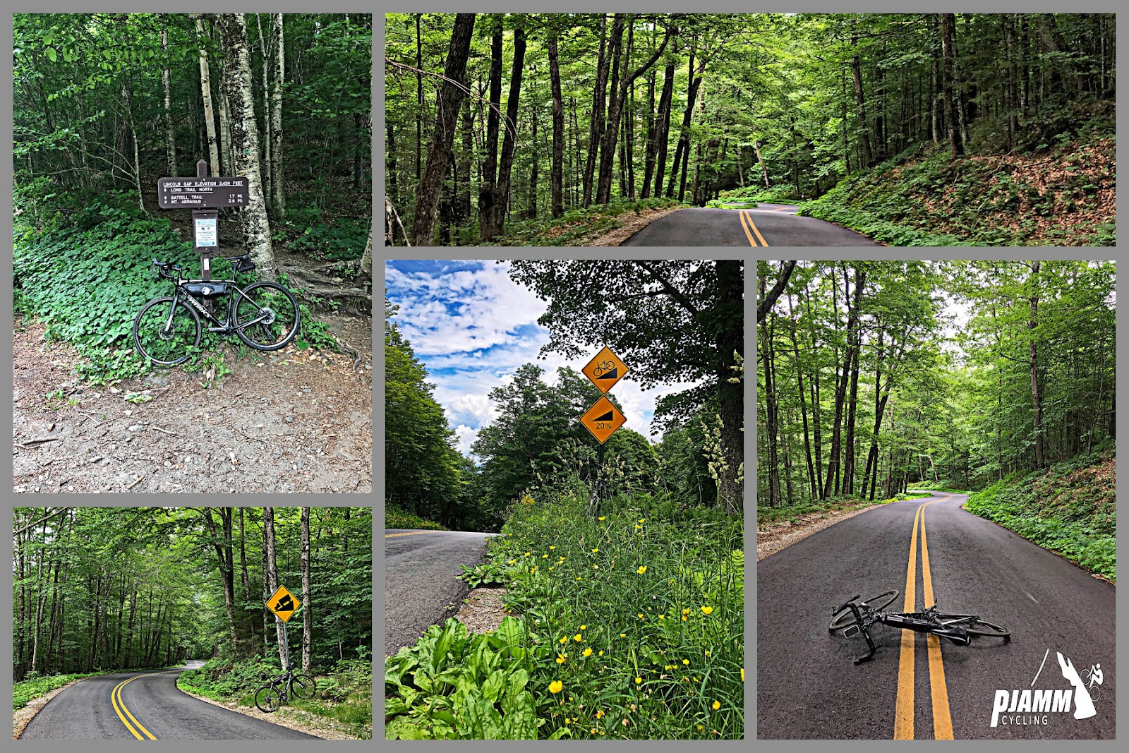 Cycling Lincoln Gap East - photo collage, bike propped against Lincoln Gap trail sign, dense tree canopy along two lane road, curve in road with steep grade road sign, yellow flowers in grass along road, bike laying down across double yellow line along a straightaway in the roadway
