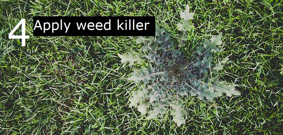 4. Apply weed killer twice per year