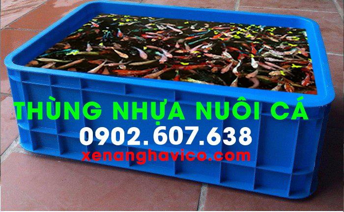 thùng nhựa nuôi cá