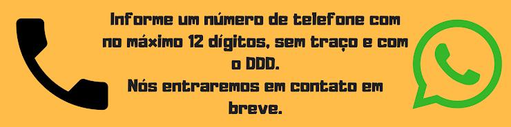 Informe um número de telefone com no máximo 12 dígitos, sem traço e com o DDD.