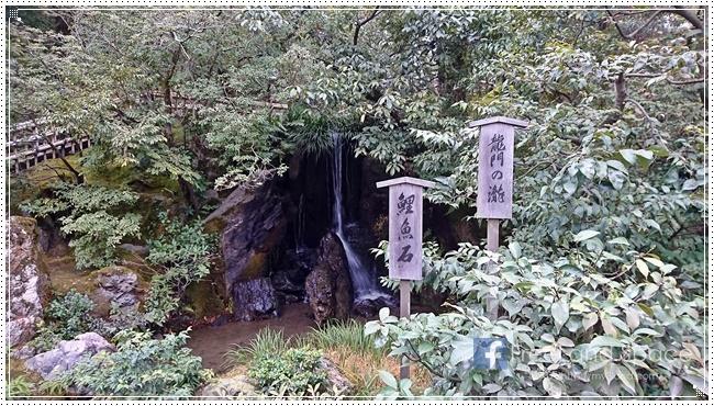 金閣寺9.JPG