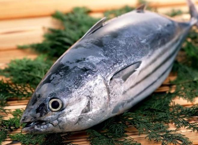 Cá ngừ đại dương mang đến rất nhiều lợi ích cho sức khỏe của mọi người
