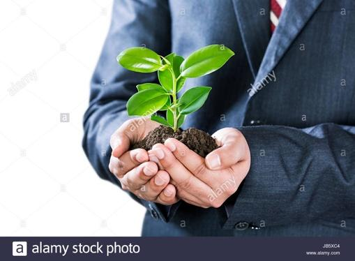 A person in a suit holding a flower Description automatically generated