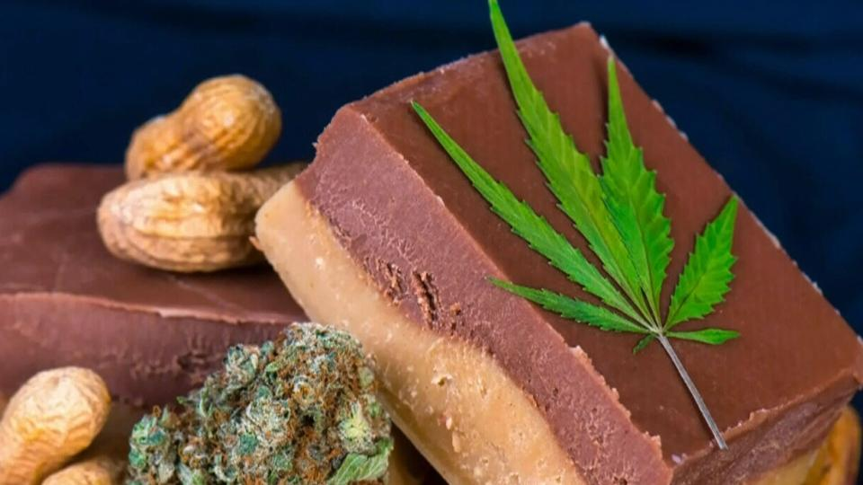 Cannabis edibles are now legal: Everything you need to know | CTV News