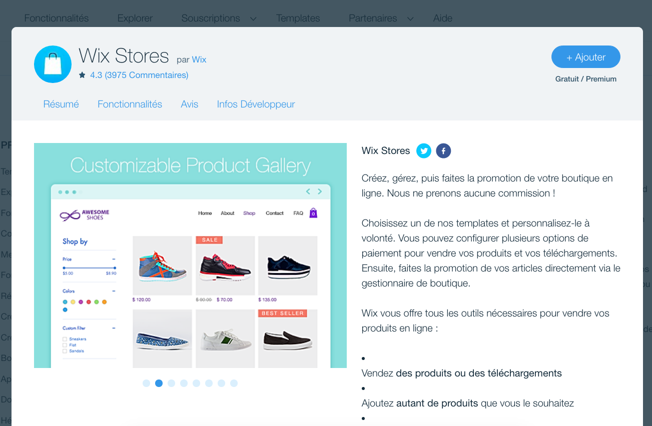 Wix Store