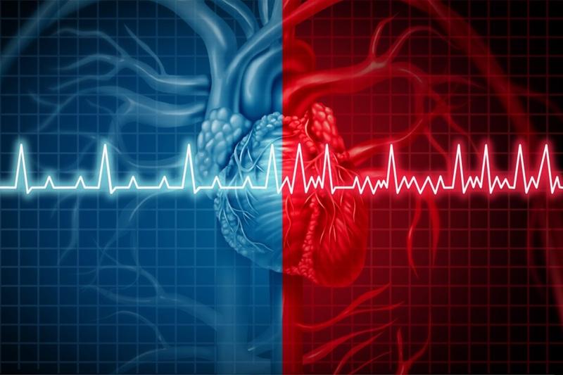 Như thế nào là nhịp tim chuẩn?