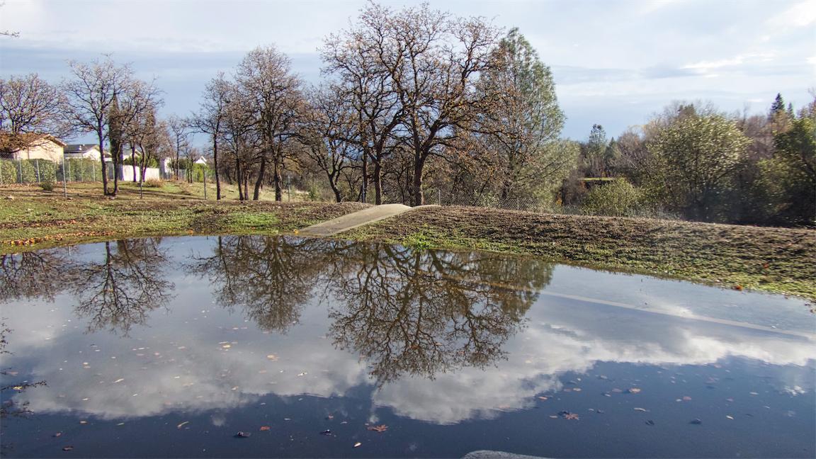 Treehouse Lake.jpg