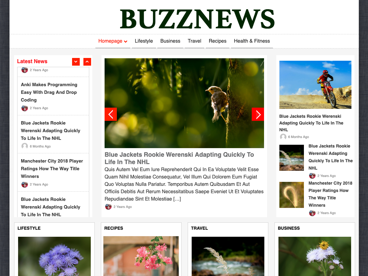 buzznews wordpress theme