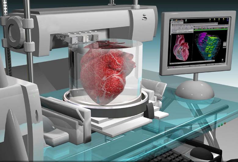 3D печать органов уже не выглядит фантастикой (изображение: Frank Wojciechowski).