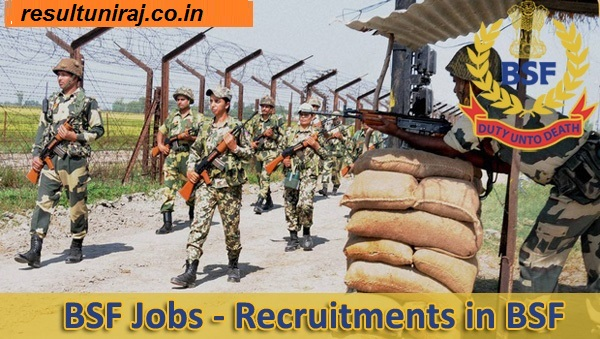BSF Recruitment 2019, Border Security Force Jobs 2019, BSF Constable Vacancy 2019