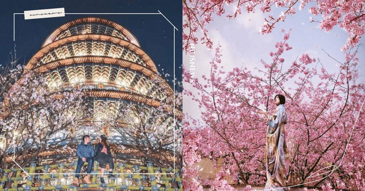 2021櫻花季, 賞櫻花景點