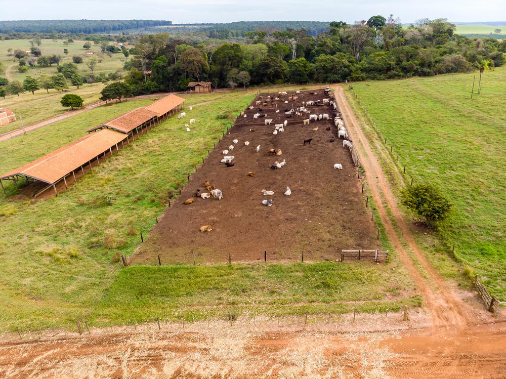 Terrenos planos, arenosos e localizados em posição central dentro da propriedade rural são os melhores para construir o curral. (Fonte: Shutterstock)