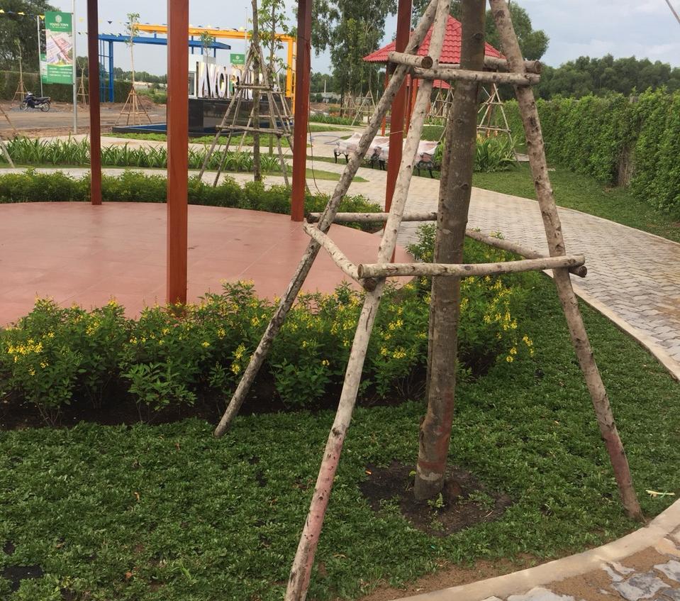 Chăm sóc cây cảnh và cỏ sẽ mang đến một không gian xanh cho cơ quan xí nghiệp