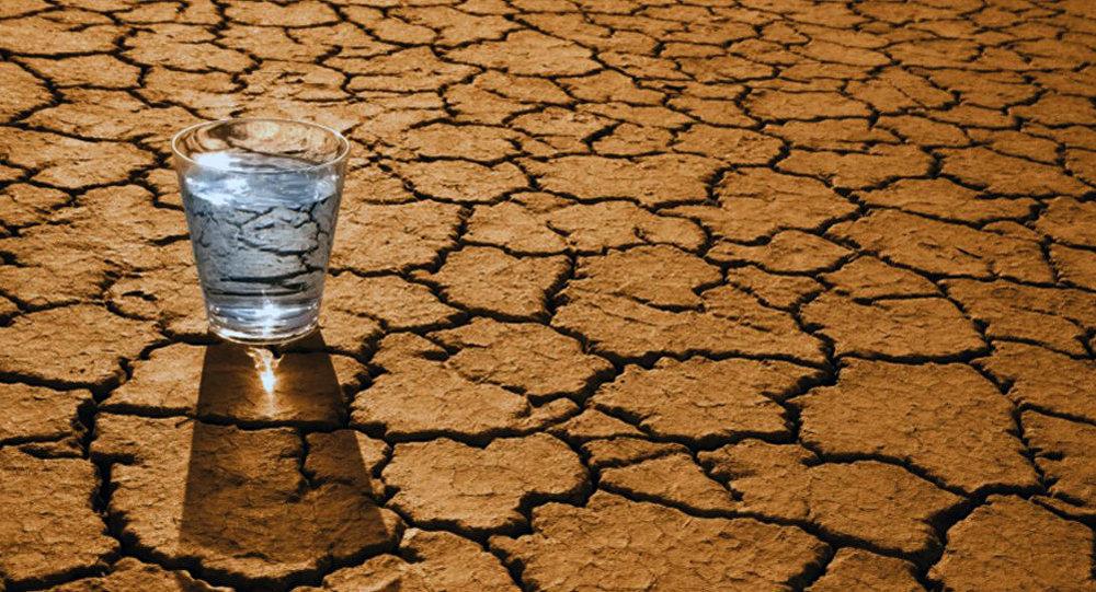 Страшенні посухи та імпорт питної води? Що робити, аби не перетворити Україну на пустелю