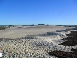 Cercas e palha de coco para conter o avanço das dunas
