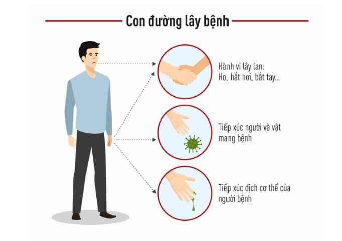 11 sự thật về virus Corona (nCoV 2019)