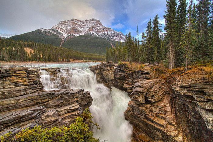 Vườn quốc gia Jasper với những rừng thông, những con thác cuồn cuộn đổ xuống chân núi