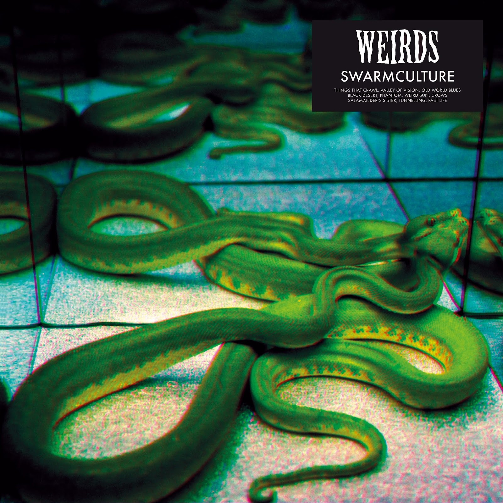 WEIRDS - SWARMCULTURE (SMALL).jpg