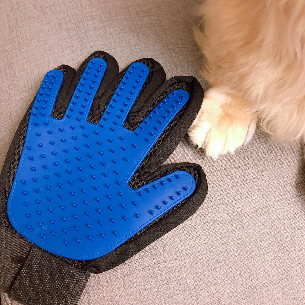 C:\Users\S3-56\Desktop\(LOOK)神奇寵物按摩除毛梳理手套-貓狗適用(右手)\S__36388870.jpg