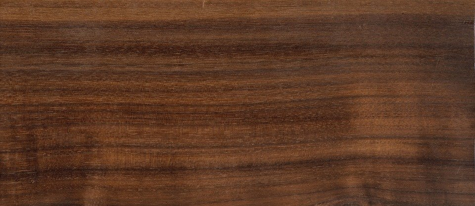 Welche Holzarten gibt es?