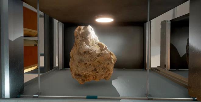 Một mẫu vật thu được sau cuộc thám hiểm bên ngoài thực địa.