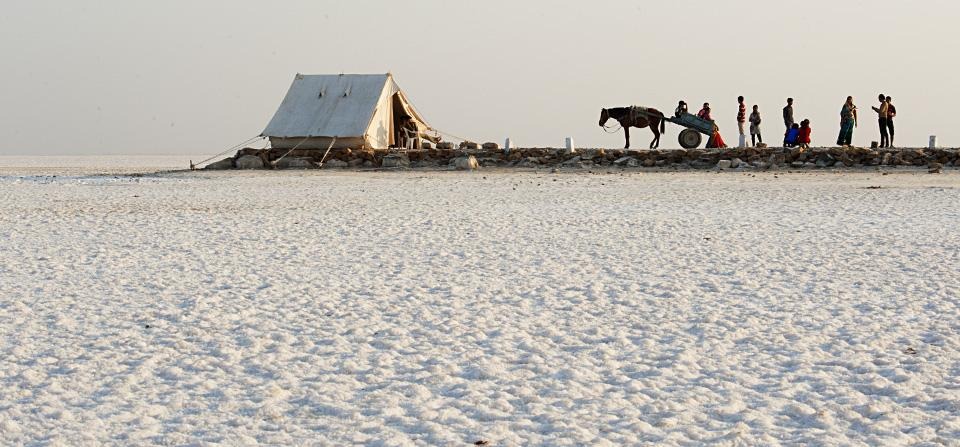 Image result for 1. Rann of Kutch images