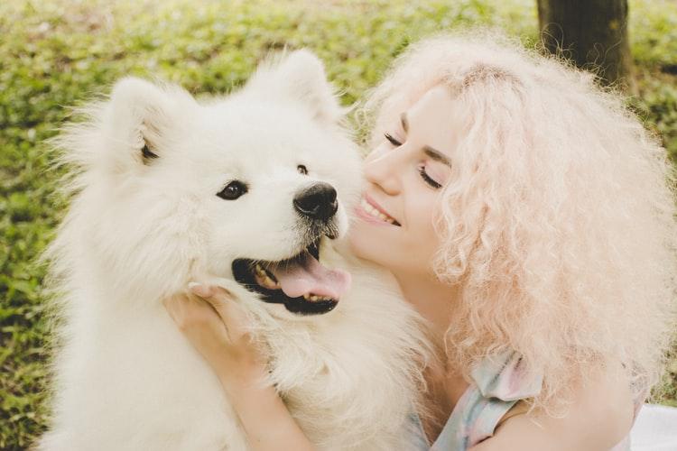 DOG DEPRESSION(A guide)