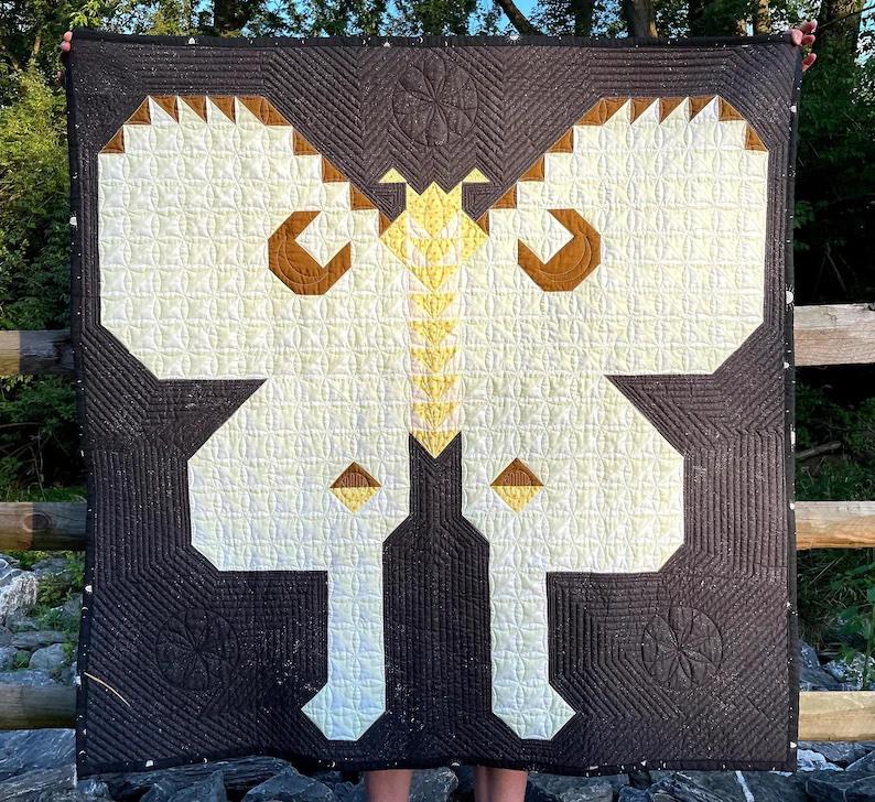 12. Luna Moth Pattern