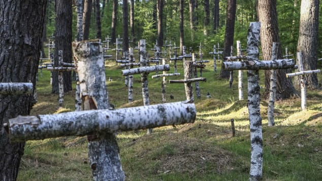 Birch crosses mark the graves of soldiers who died after being incarcerated at Gross Born.