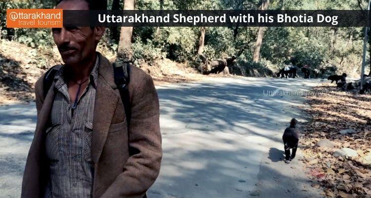 Shepherd with his dog.jpeg