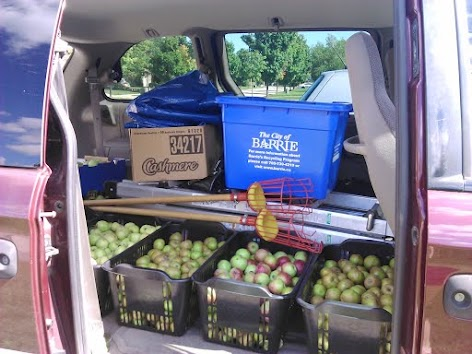 Our coordinator's van during 2015 harvest season after a weekend of picking apple trees. If you have a smaller vehicle, don't worry! You can share the load with other volunteers. Our ladders can fit in the trunk of a smaller vehicle with the back seat down.