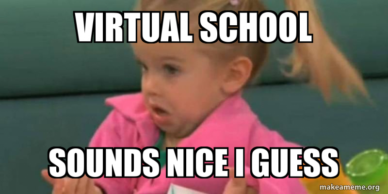 A meme showcasing how virtual schools were a great idea which are now getting tiring.