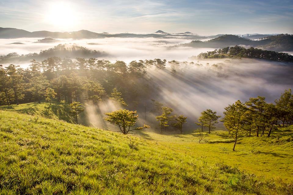 Sương mù giăng khắp sườn đồi