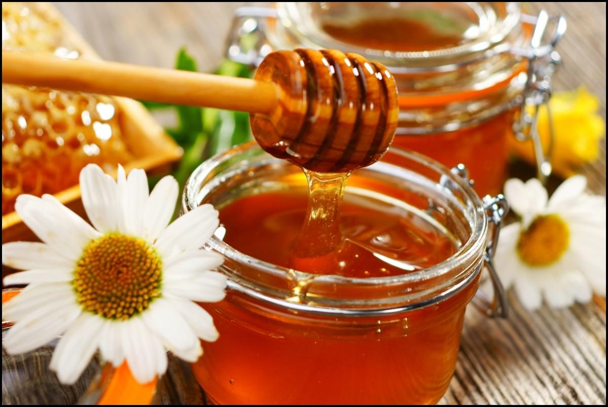 6 فوائد رائعة لعسل أكاسيا تعرف عليهم  | متجر شهد النحل
