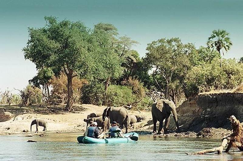 canoe-safari-Elephants.jpg