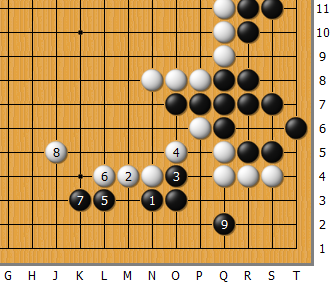 Fan_AlphaGo_02_G.png